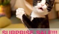 B2S Surprise Sale