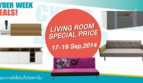 "B CYBER WEEK DEALS ""Living Room Special Price"""