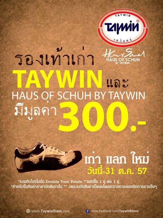 TAYWIN