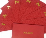 ALDO %22Happy Lunar New Year 2017%22
